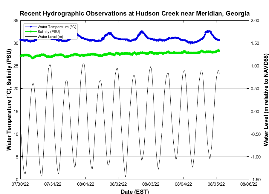 Recent Hudson Creek at Meridian, Georgia Water Conditions