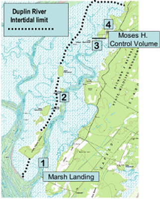 Duplin intertidal limit