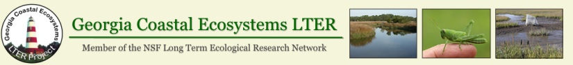 Georgia Coastal Ecosystems LTER